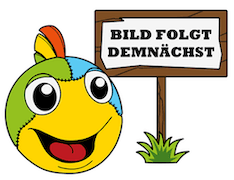 Minions Wimmelbuch